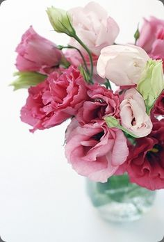 Pink lisianthus - we grow all of these colors also white & cream