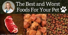 Here's a revised list of 13 types of pet foods ranked from best to worst, including a new category that wasn't even popular five years ago. http://healthypets.mercola.com/sites/healthypets/archive/2015/11/08/best-to-worst-pet-food-types.aspx