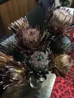 Unique colored proteas, dried. For sale. Limited availability
