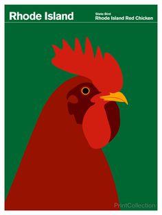 Trademark Global Print Collection - Artist 'Rhode Island Red Chicken' Canvas Art - 35 x 47 Rhode Island Red, Artist Canvas, Canvas Art, Red Chicken, Chicken Art, Chicken Logo, Chicken Painting, Voyage Usa, Best Egg Laying Chickens