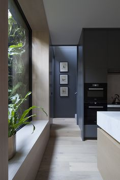 Gallery Of Dank Street House By Neil Architecture Local Australian Contemporary Interior Design Albert Park, Melbourne Image 7 - The Local Project Australian Interior Design, Contemporary Interior Design, Home Interior Design, Modern Design, Residential Architecture, Interior Architecture, Melbourne Architecture, Landscape Architecture, Street House