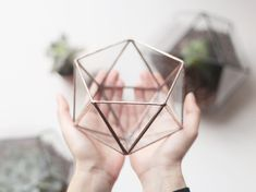 Waen Shop NEW! Little Geometric Glass Terrarium / Icosahedron / Handmade Planter / Modern Planter for Indoor Gardening / Copper or Silver Terrarium Terrarium Diy, Terrarium Containers, How To Make Terrariums, Succulents In Containers, Glass Terrarium, Glass Containers, Glass Boxes, Succulents Garden, Modern Planters