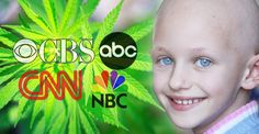 MSM Finally Admits It, Cannabis Can Cure Cancer, It's High Time We Stop Arresting People for It - Theinfopost
