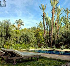 #realestatephotography #luxuryrealestate #luxuryhomes #swimmingpool #morocco #lifestyle #worldphotography #canon #realestatevacation #luxuryproperties #shooting #anassphotography #palmeraie - posted by Anass Moukhliss https://www.instagram.com/anass_photography - See more Luxury Real Estate photos from Local Realtors at https://LocalRealtors.com/stream