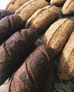 Hoje tem os famosos pães integrais (e veganos! ) feitos com a farinha francesa orgânica #bagatelle  Já reserve o seu!  Com amor Bolo.  #comamor #frenchbread #vegan #vegano #organicfood #orgânico