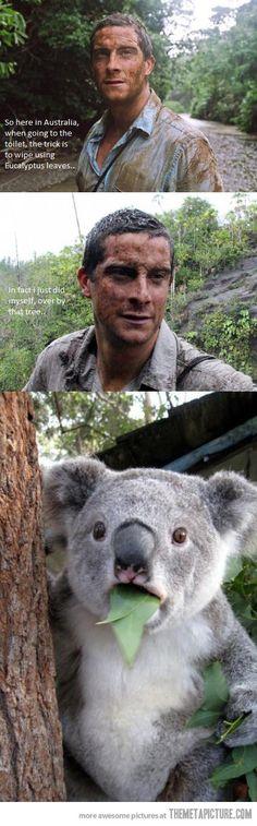 Bear Grylls In Australia…