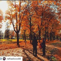 Spend beautiful day with your frinds enjoying outside #wheretoserbia #Travel #Holidays #Trip #Traveling #Travelgram #TopLikeTags #Travelling #Travelingram #Traveler #Travels #Travelphotography #fortress #castle #autumn #Travelph #Travelpic #Travelblogger #Traveller #Traveltheworld #Travelblog #Travelbug #Travelpics #Travelphoto #Traveldiaries #Likesreturned #Traveladdict #Travelstoke #TravelLife #Serbia