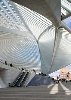 msmnkt:    Santiago Calatrava - Liège Guillemins TGV Station, Liège, Belgium    Santiago Calatrava