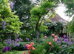 Springtime garden - allium, poppies - purple & salmon - The Garden Aesthetic