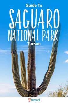 8 tips on things to do in Saguaro National Park in Tucson. Plus tips on places to stay in Tucson! This National Park in Arizona is one of the best places in the USA to see giant cactus! Info on hikes with kids, viewing the beautiful desert sunset, planning East or West Saguaro, camping tips and information for RVing, and more! #NationalPark #Tucson #Arizona #NationalParks #traveltips #travel