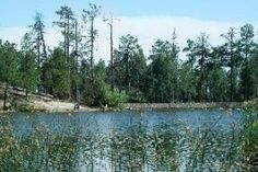 #Tucson Arizona Attractions #Rose Canyon Lake For Tucson Fishing In The Catalina Mountains Free Information Directions And Map To Rose Canyon Lake  Rose Canyon Lake is a small lake covering only 7 acres.  Rose Canyon Lake is in the Catalina Mountains 29…