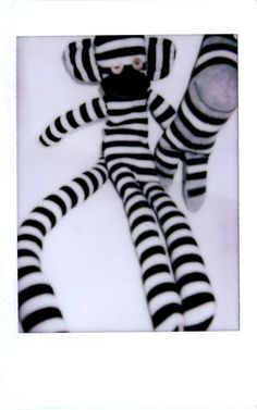 polaroid monkey_monster