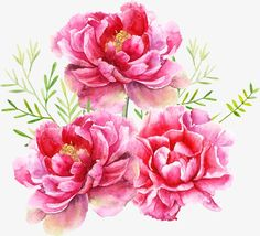 flower, Small Fresh, Hand Painted, Watercolor PNG Image