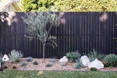Vertical fence inspiration Vertical fence inspiration with bark mulch planted with tall grasses. Australian Garden Design, Australian Native Garden, Backyard Fences, Backyard Landscaping, Backyard Designs, Coastal Gardens, Garden Edging, Cacti Garden, Gardens