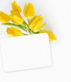Banner Background Images, Flower Background Wallpaper, Frame Background, Flower Backgrounds, Vintage Flowers Wallpaper, Beautiful Flowers Wallpapers, Pretty Wallpapers, Butterfly Frame, Flower Frame