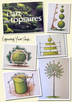 Inspiration for Topiary Nursery (L'Art Topiaires)