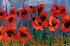 Authors of new craft book 'Everything Oz' show us how to make a 'World Famous Field-O-Poppies' read more