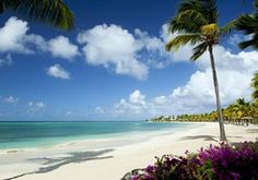 Jumby Bay Beach in  Saint John's, Antigua And Barbuda #travel