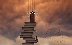 situations, books, man, creative design, art, birds, hd, wallpaper