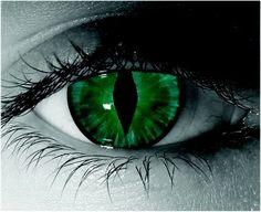 green,cat eye contact