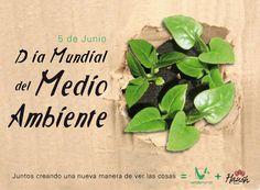5 DE JUNIO. DÍA MUNDIAL DEL MEDIO AMBIENTE