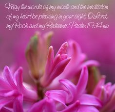 Psalm 19:14 ~ May the words of my mouth and the meditation of my heart be pleasing in your sight O Lord my Rock and my Redeemer...