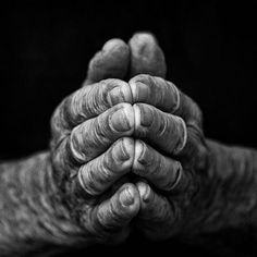 86 Year Old Working Hands - Major Work: Portraits of Power - 86 Year Old Working Hands Black N White, Black And White Pictures, Hand Fotografie, Photo Main, Working Hands, Hand Photography, Hand Reference, Old Hands, Hand Art