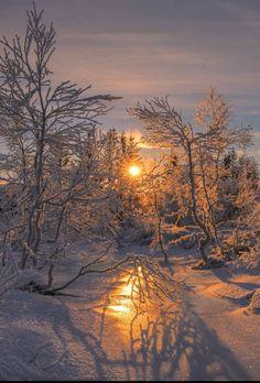 Winter Szenen, Winter Magic, Winter Sunset, Winter Fire, Winter Ideas, Winter Photography, Landscape Photography, Nature Photography, Photography Lighting