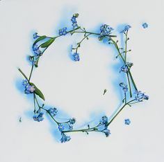 forget me not flower tattoo - Google Search