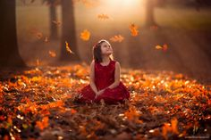 Photograph Autumn Prelude by Jake Olson Studios on 500px