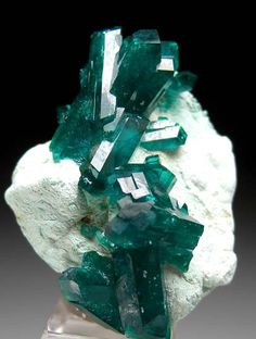 Dioptase from Christoph Mine, Kaokaveld, Namibia Minerals And Gemstones, Crystals Minerals, Rocks And Minerals, Crystals And Gemstones, Stones And Crystals, Beautiful Rocks, Rock Collection, Mineral Stone, Crystal Shop