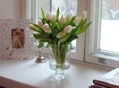 would love to have fresh flowers in my house year round!