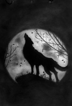 wolf howling at the moon coloring pages | how to draw : wolf and moon
