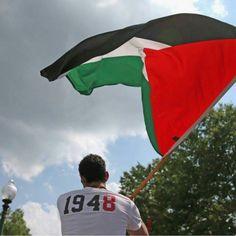 Anda Tahu Dari Tahun Berapa Israel Lalnatullah Menduduki Palestina.? 1948 atas Izin AmerikaInggris dan PBB..! Lalu masih Berharap dari PBB untuk Membebaskan Palestina.? Meraka Tidak akn Berhenti Memusuhi Kalian Hingga Kalian Menjadi Bagian dari Mereka dan agama Mereka..! Lalu Siapa yang Bisa Kita Harapkan Untuk Membebaskan Palestina.? NEGERI Arab.? Atau Negeri Muslim disekitar Palestina.? #Tidak Saudaraku..! . .  Sudah Cukup Lama Palestina di Jajah..! Mereka yang Mengaku Para Pemimpin Muslim…