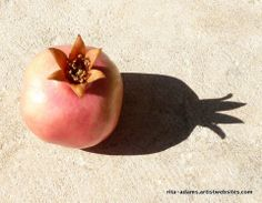 Pomegranate and Shadow