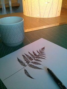 Hannah Nunn: fern drawing