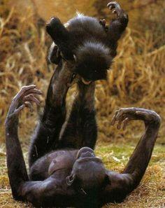 Motherhood... ;-)