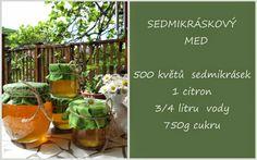 Pavlova, Med, Plants, Gardening, Lemon, Lawn And Garden, Plant, Planets, Horticulture