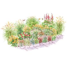 Bird-Friendly Garden for Fall Wildlife will enjoy this garden all season long, but you'll love it most in fall. Ornamental grasses, black-eyed Susan, and Japanese sedge are standouts.    Garden size: 32 by 13 feet