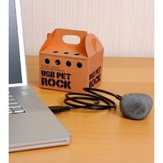 USB Pet Rock | Novelty Concept    hehe!!! What an awesome and  funny idea!!! :-)