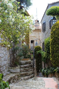 Eze france on pinterest france provence france and for Cafe du jardin eze