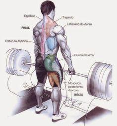 Fast #Muscle Hypertrophy - #Workout Exercises https://www.corposflex.com/hipertrofia-muscular-rapido-exercicios-treino