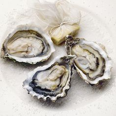 Oysters aren't just an aphrodisiac. They contain more immunity-boosting zinc than any other food, making them a perfect pick for cold-and-flu season.