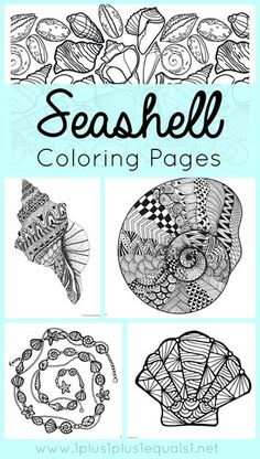 Seashell Coloring Pages ~ fun beach theme seashell coloring for adults or kids!