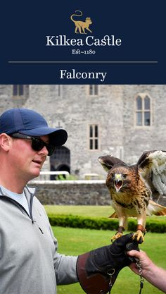 At Kilkea Castle, we aim to provide education and entertainment as we interact with these amazing birds of prey.