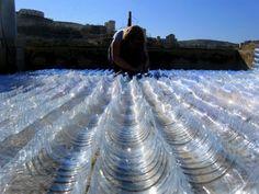 teja de botellas de plástico