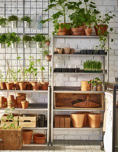 Hold styr på dit haveudstyr med en udendørs reol til urtepotteskjulere, krukker og planter