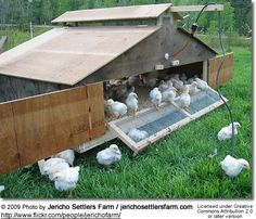 Antique Super Hatcher Wood Chicken Incubator Complete Amp Ready To Use Chicken Incubator