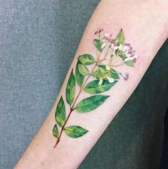 Continue to show tattoos with exotic plants made in Berlin. this flower called water jasmine and Marcela brought it from Bangkok. I'm so inspired to make herbs that I have never seen before. thank you!