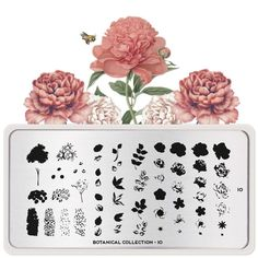 Discover our new botanical collection filled with blooming flowers, vintage blossoms, beautiful butterflies and lovely succulents. Perfect for any spring day! Stamping Nail Polish, Nail Stamping Plates, Blooming Flowers, Floral Flowers, Beautiful Butterflies, Beautiful Flowers, Stainless Steel Nails, Image Plate, Design Floral